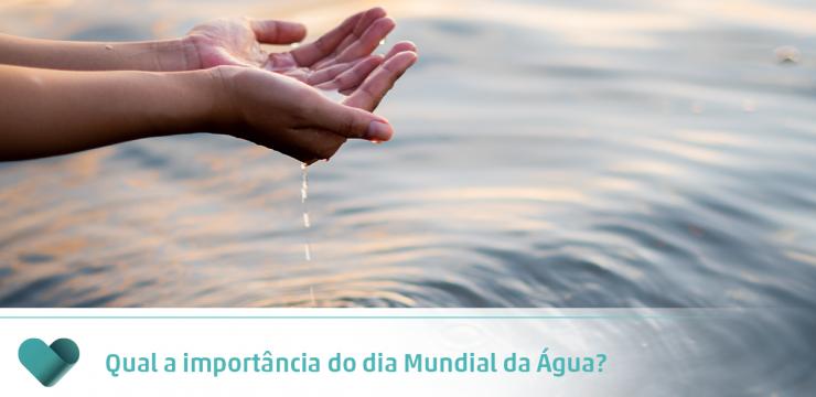 Qual a importância do dia Mundial da Água?